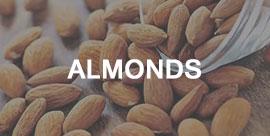 almonds -International trading company
