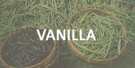 Vanilla - International trading company