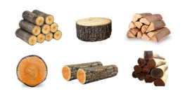 Woods and timber - Import export company